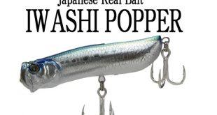 Iwashi popper
